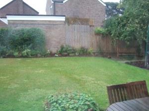 Rainy garden (R)