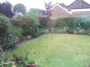 Rainy garden (L)