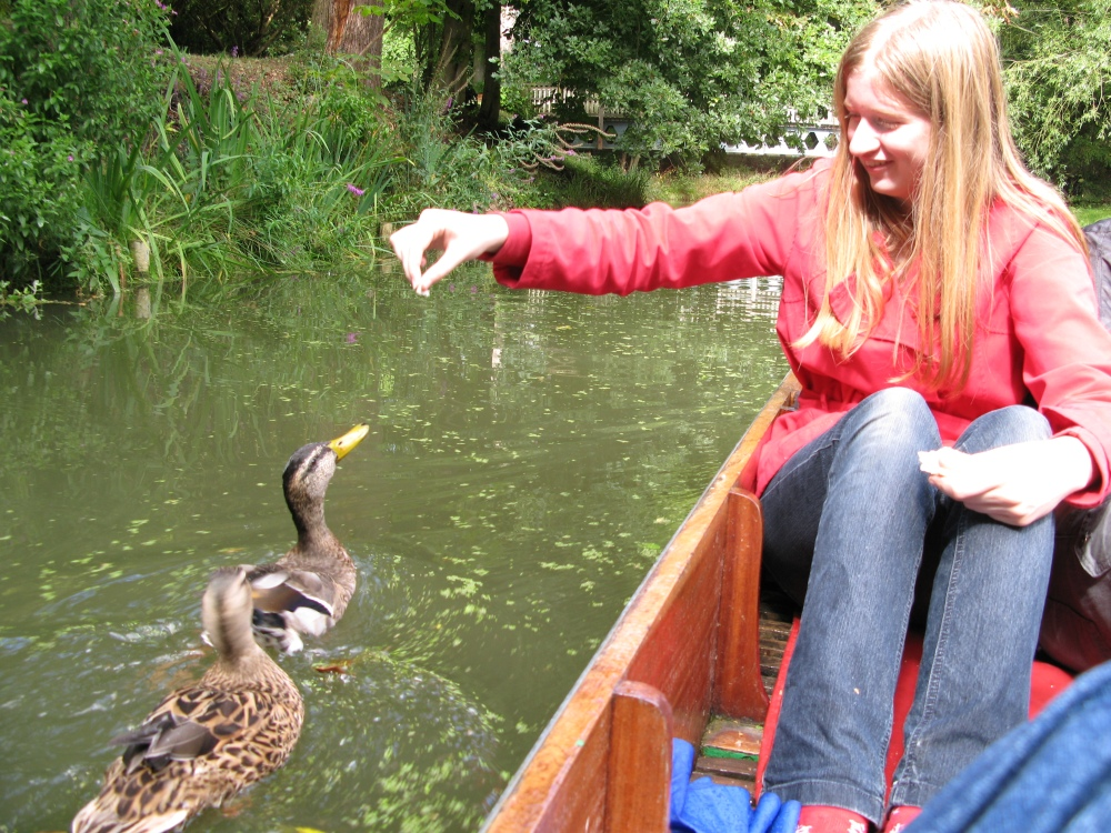 Punting in Oxford, and banjos (4/6)