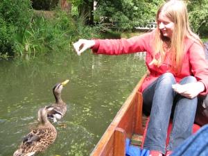 Alice feeds the ducks