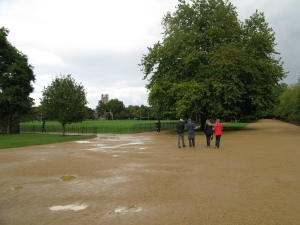 The Long Walk, Christ Church Meadow