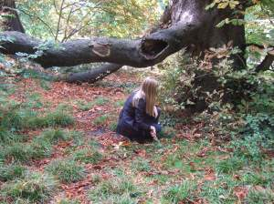 Lucy and the horse chestnut tree